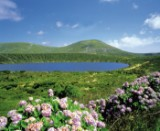 10-day cruise of Portuguese and Spanish Islands 'The Azores - Madeira – Canary Islands' including flights with the MS HAMBURG from 17.02.-26.02.2015 for 2 people