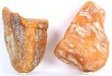 Danish amber, six unpolished pieces, 492 grams (6)