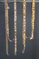 Dani, West Papua, Nya Guinea. 2 st. band med  kaurisnäckor