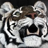 BenJep/ Zoombeeart. Komposition m/ tiger, 100 x 100 cm