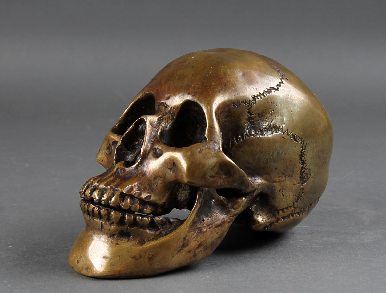 Kranie af bronze - Kranie udført i håndstøbt bronze. H. 15, L. 20, B, 12 cm