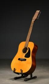 Aria Ariana 12-strenget guitar