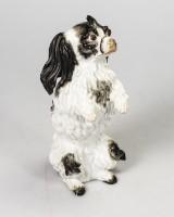 Meissen, 'Bolognese Dog - Standing on Hind Legs' - design: Johann Joachim Kaendler