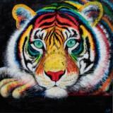 Annette Majgaard. 'Watching Tiger'