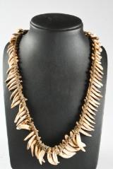 Asmat, Kasuarinakusten, Nya Guinea. Halsband med hundtänder