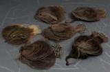 Seks åleruser (6)
