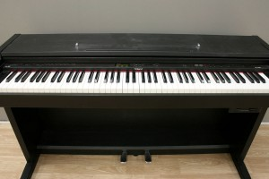 electric piano hp 2900g roland digital piano. Black Bedroom Furniture Sets. Home Design Ideas