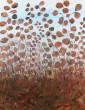 Antoine Klinkhamer, olie/papir på lærred, 'Red flowers'