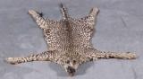 Leopardskind