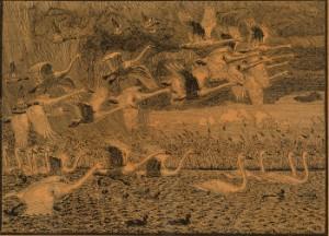 Johannes Larsen  cd.motiv med svaner  træsnit. - Dk, Herlev, Dynamovej - Johannes Larsen (1867-1961), motiv med svaner og ænder, træsnit på japan papir, sign. i bly, Johannes Larsen, 44 x 57, cm. (51,5 x 65 cm). Fremstår med brune pletter - Dk, Herlev, Dynamovej