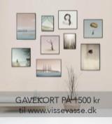 Gavekort på 1500 kr. til VISSEVASSE - Til fordel for Dignity