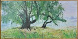 Esther Herløw, olie på papir på plade, træer på bakketop