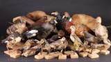 Samling udstoppede fugle m.m. (25)