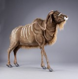 Hansa Toys. Large mechanical kudu. H: 170 cm.