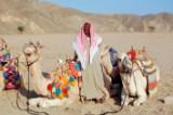 Falk Lauritsen rejse til Egypten, 1 uge for 2 personer