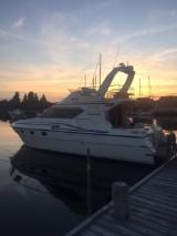Colvic Suncruiser Flybridge. Motorbåd
