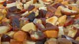 Danish amber, partially polished pieces, 1,575 g