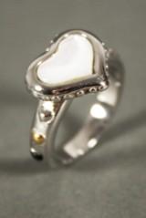 Smyckeset, halsband, ring, schal och schalspännen(6)