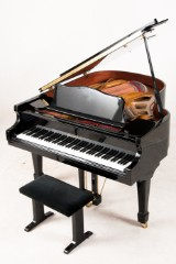 Friedrich Lehne baby grand piano with stool