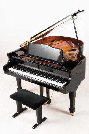 musikinstrumenter og musiknostalgi flygel kort flygel friedrich lehne med. Black Bedroom Furniture Sets. Home Design Ideas