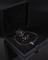 Vedhæng og ørestikker med diamanter (5)