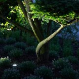 LED-Lys i haven - oplys træer eller hus