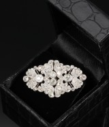 Oval diamond brooch, platinum, total approx. 4.54 ct. c. 1920