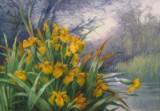 Wilhelm Schütze, 'Irisblüte am Seeufer', oliemaleri
