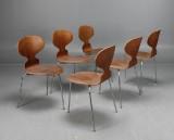 Arne Jacobsen, myran, 3100, teak, 6 st