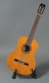 Santana akustisk guitar