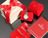 Omega Seamaster Co-Axial Chronometer ladies' watch