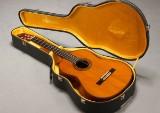 Yamaha akustisk guitar, model G-255S