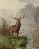 Adolf Mackeprang. Deer by a forest lake
