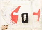 James Coignard färgcarborundum