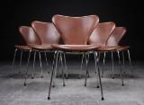 Arne Jacobsen. Six Series 7 chairs, model 3107 (6)