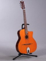 Fina guitar model FAW-905