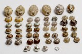 Charlotte Borgen - 50 charms / beads - Beige (50)