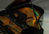 Schiedmayer & Söhne Stuttgart, Grand Piano model 20