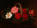 I. L. Jensen's school. Colourful flowers in basket on stone sill